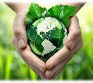 2018 > Fondul pentru mediu