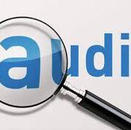 Obligativitate audit intern