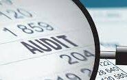 Speta: Refacturare servicii de audit
