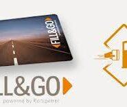 Monografie contabila: Card combustibil