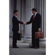 Speta: Activitati de consultanta in afaceri si management