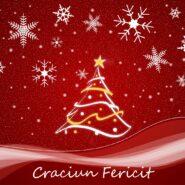 Sarbatori fericite si un an nou plin de realizari :)