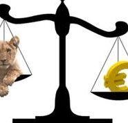 Cursul de schimb valutar valabil pentru modificarea perioadei fiscale la TVA