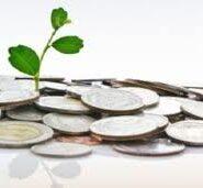 Guvernul va reduce limita veniturilor pentru microîntreprinderi
